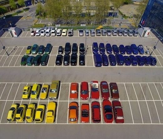 """Chủ nhân của những chiếc xe này đã """"rủ nhau"""" đậu ở từng khu riêng? (Ảnh: Viralnova)"""