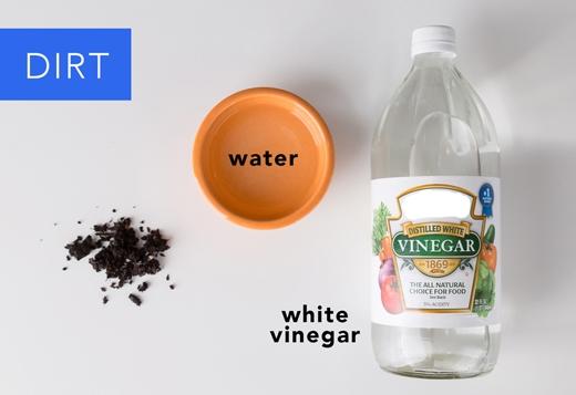 Đất: Pha giấm và nước theo tỉlệ 1:1. Đổ hỗn hợp này lên vết bẩn rồi để trong 5 phút. Nếu vết bẩn cứng đầu thì dùng tay vò sạch. (Ảnh: Greatist)