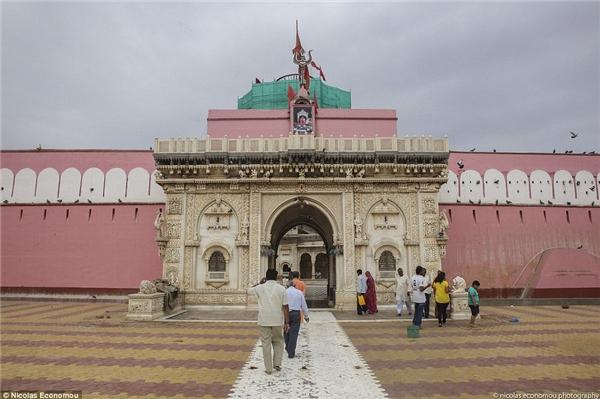 Đền Karni Mata là một ngôi đền thờ đạo Hindu. (Ảnh: Internet)