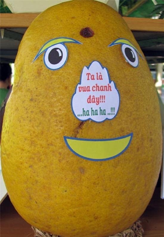 Quả chanh khổng lồ nặng 6 kg tại lễ hội trái cây Nam Bộ 2012. (Ảnh: Ngôi sao)