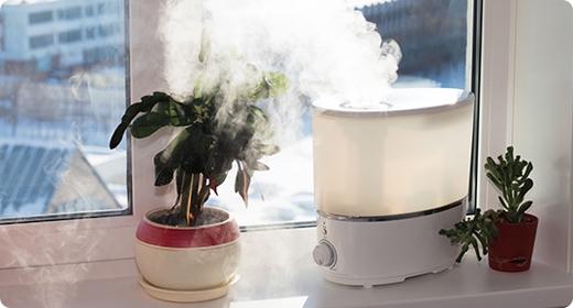 Sử dụng máy xịt hơi nước hay máy tạo ẩm trong nhà. Nếu không có các loại máy móc này, bạn có thể để trong nhà một chậu nước để làm tăng độ ẩm cho không khí. Đây là cách những người dân xứ lạnh vẫn thường làm khi xưa. (Ảnh: Internet)