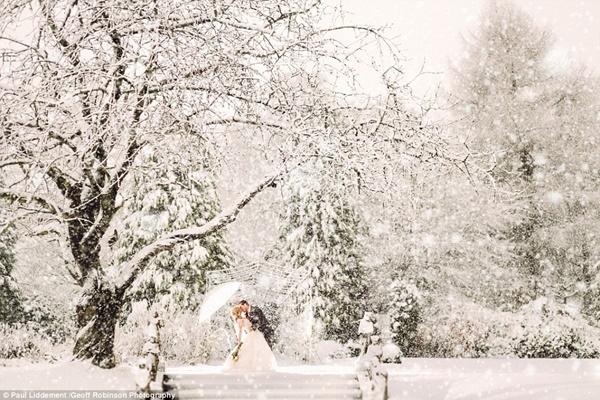 Địa điểm tổ chức lễ cưới của của cặp đôi tràn ngập tuyết trắng như trong mơ.