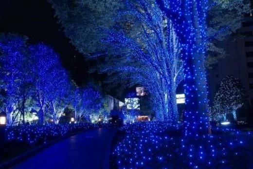 Thêm một nét đặc sắc có 1-0-2 từ chương trình New Year Countdown chính là sự xuất hiện của con đường Giáng sinh Xanh dài nhất, đầy sắc màu cổ tích.(Ảnh: Internet).