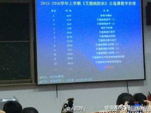 Sinh viên Trung Quốc hổ thẹn trước chú chó chăm học