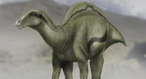 Phát hiện hóa thạch khủng long có hình dáng dị chưa từng thấy