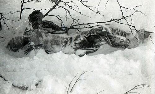 Một xác chết bị vùi trong tuyết lạnh