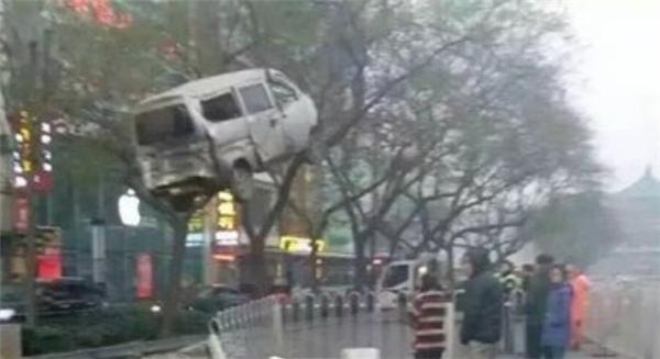 Bức ảnh ghi lại khoảnh khắc chiếc xe bị treo lên cây. (Nguồn: chinadaily)