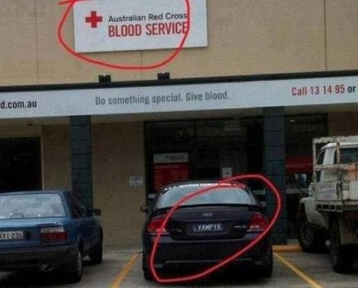 Dịch vụ hiến máu và ma cà rồng. Đúng là trùng hợp khó tin. (Ảnh: Internet)