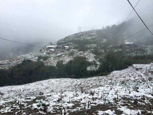 Tuyết rơi phủ trắng Sapa khiến giới trẻ Hà Thành vô cùng thích thú.