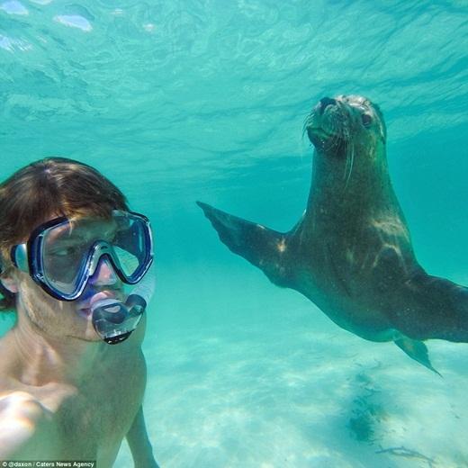 Allan tất nhiên không thể bỏ qua cơ hội tự sướng với chú sư tử biển này.(Ảnh: Internet)