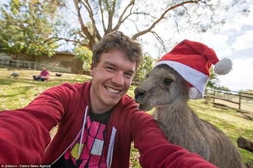 """""""Chúng ta cùng gửi lời chúc mừng Giáng sinh đến mọi người nào"""".(Ảnh: Internet)"""