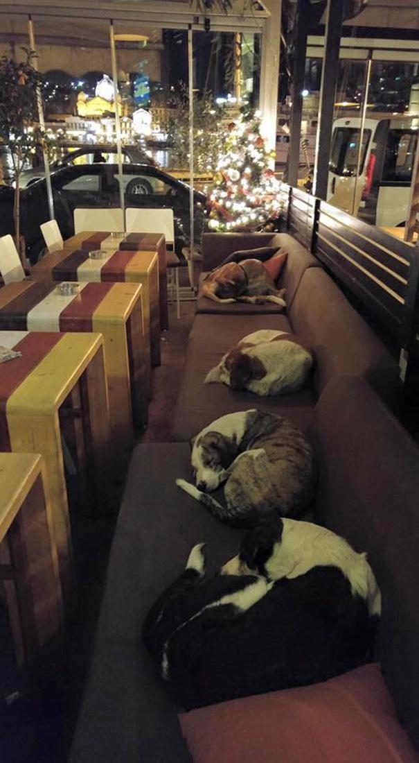 Hình ảnh đẹp khiến cư dân mạng ấm lòng ở quán cà phê Hott Spott.(Ảnh: Internet)
