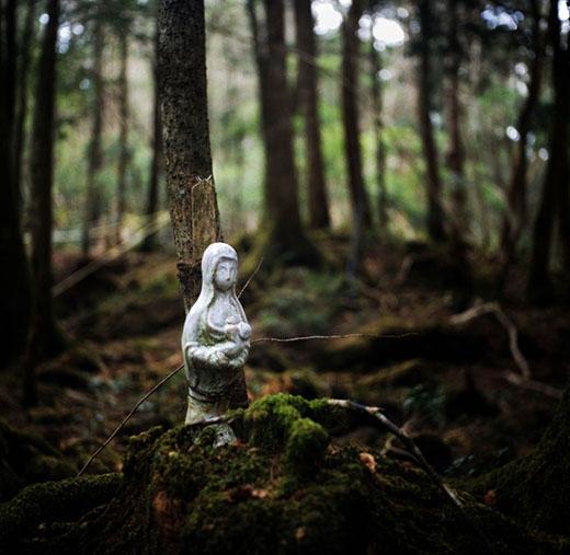 Một bức tượng được buộc vào cái cây từng có người treo cổ tự tử. (Ảnh: Rob Gilhooly)