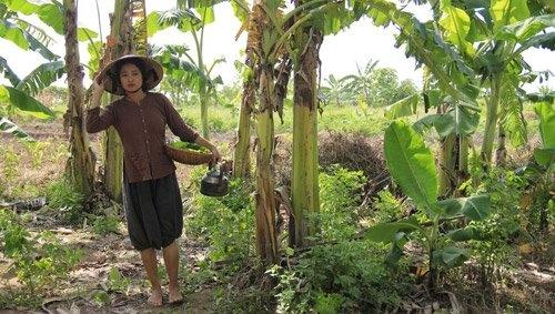 Nếu như ngoại hình của Thúy Hằng trong Cuộc đời của Yến vẫn còn khiến cho khán giả có chút băn khoăn thì diễn xuất của cô đã giúp xây dựng lên hình tượng người phụ nữ Việt Nam chuẩn mực thời xưa.
