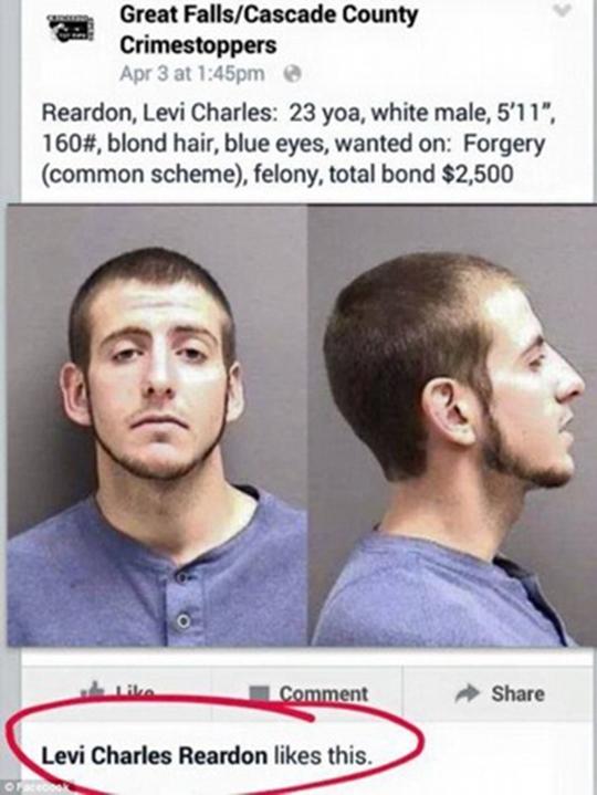 Levi Charles Reardon đã like ảnh mình trên Facebook của cảnh sát. (Ảnh: Internet)