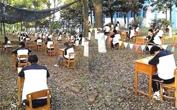 Không chỉ thế, vào tháng 4/2015, ban giám hiệu một trường trung học tại Cẩm Châu (Hồ Bắc, Trung Quốc) còn tổ chức cho học sinh của mình thi cuối kì trong rừng với mong muốn giúp học sinh vượt qua những khó khăn của thời tiết và không gian lận.(Ảnh Internet)