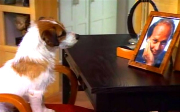 Chú chó Moose trong một cảnh phim. (Ảnh: Internet)