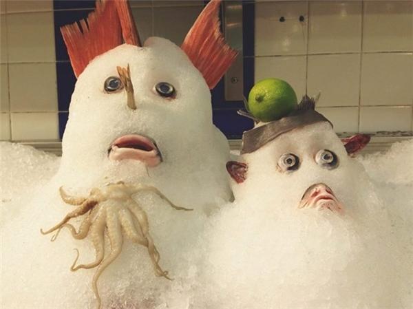Tác phẩm nghệ thuật trên lông lạc đà đẹp ngoạnTất cả người mua đều giật mình khi thấy những quái vật tuyết này trong một cửa hàng tạp hóa, khu vực hải sản.