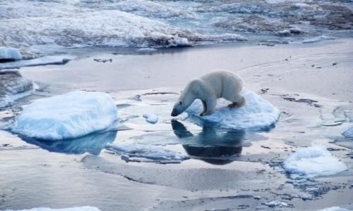 Biến đổi khí hậu là nguy cơ tận thế hiện hữu nhất mà con người sẽ phải đối mặt trong tương lai.