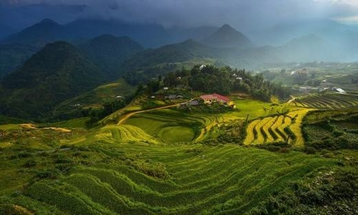 """Trong năm 2015, nhiều nhiếp ảnh gia Việt Nam đã gửi nhiều tác phẩm dự thi các cuộc thi ảnh quốc tế danh tiếng. Trong đó, nhiều ảnh đẹp Việt Nam được đánh giá cao. Trong cuộc thi ảnh """"Your Shot"""" (Bức hình của bạn) do Tạp chí National Geographic tổ chức, tác phẩm chụp ruộng bậc thang Việt Nam được đánh giá cao."""