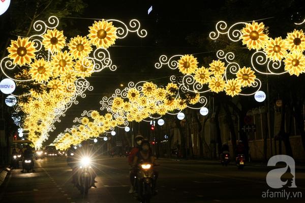 Đến khi phố thị lên đèn, đại lộ Lê Duẩn bừng sáng về đêm nhờ rừng hoa hướng dương chào xuân. Năm nay con đường được trang trí hoa hướng dương thay hoa mai như xuân 2015.
