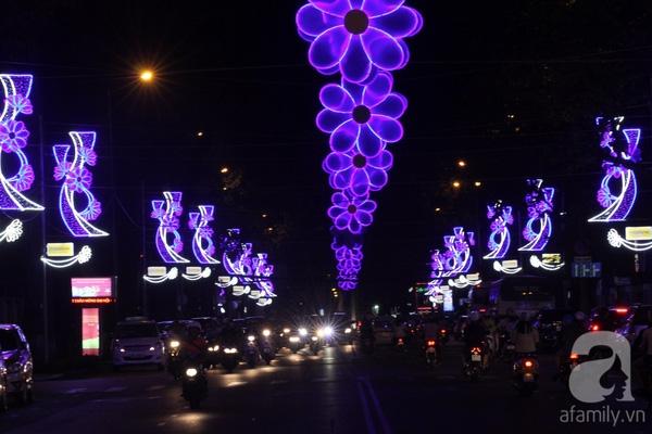Những cánh hoa mai màu tim tím huyền ảo rực sáng về đêm trên đường Phạm Ngọc Thạch.