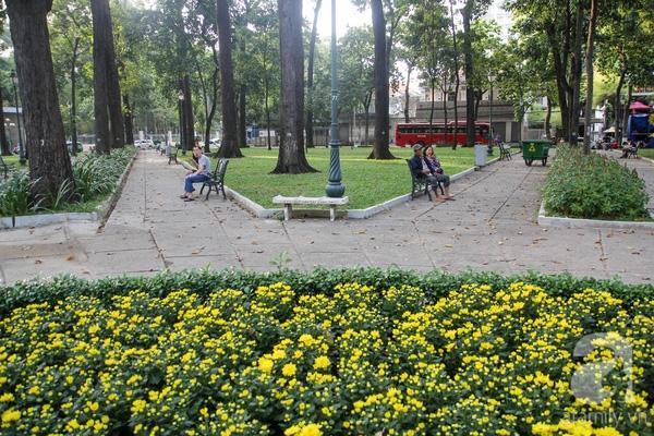 Trong công viên 30/4, nhiều tiểu cảnh, chậu hoa được thay bằng sắc hoa vàng, báo hiệu mùa xuân đang đến trên mảnh đất phương Nam.