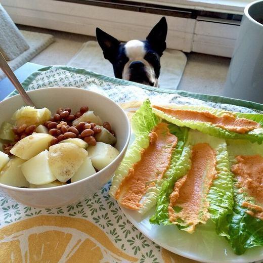 """""""Giờ ăn đến rồi, đồ ăn có rồi!..."""". (Ảnh: BuzzFeed)"""