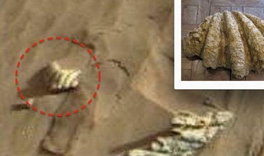 """""""Con nghêu"""" trên sao Hỏa? (Ảnh: NASA)"""