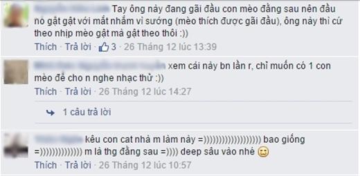 Bình luận của bạn N.H.L. (Ảnh: chụp màn hình FBNV)