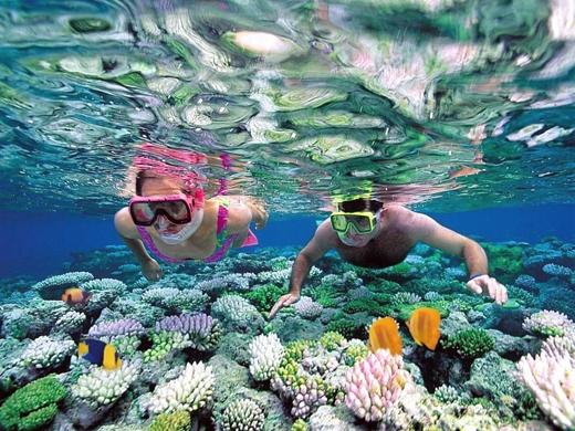 Hòn Mun được Quỹ Động vật hoang dã Thế giới (WWF) đánh giá là khu vực đa dạng sinh học biển bậc nhất ở Việt Nam.