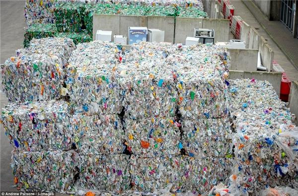 Không thể tin nổi trước rác thải nhà người ta