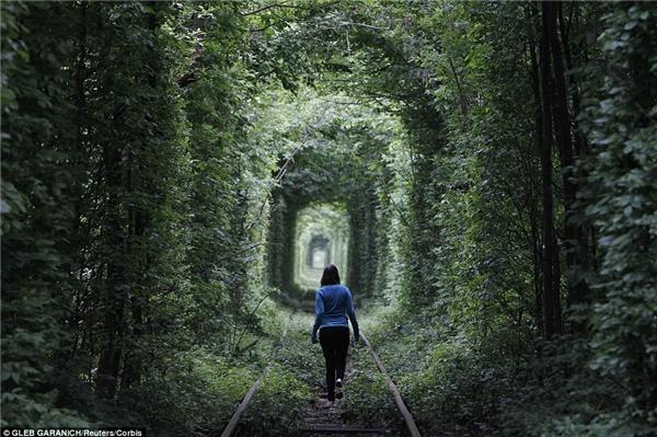 Không nơi đâu lãng mạn như đường hầm tình yêu ở Ukraine. Đường hầm tự nhiên này giờ đây chỉ được dùng để vận chuyển gỗ 3 lần 1 ngày. Nhưng hơn thế nữa, đây là địa điểm hẹn hòyêu thích của nhiều cặp đôi trên khắp thế giới.(Ảnh: Daily Mail)
