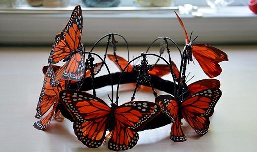 Vương miện bươm bướm của Angela (Ảnh: Angela Clayton)