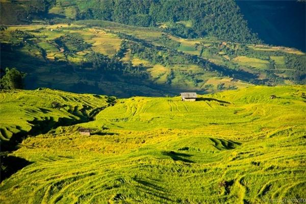 Y Tý, Lào Cai:Y Tý nằm ở vùng cao nguyên phía Bắc Việt Nam, với khung cảnh hùng vĩ, biển mây giữa non cao và những ruộng bậc thang tuyệt đẹp. Đây là địa điểm lý tưởng cho du khách muốn trải nghiệm cuộc sống của miền núi Việt Nam mà không phải đi quá xa trung tâm du lịch Sa Pa. Bạn nên tới chợ của người địa phương, khám phá các mặt hàng thủ công, nông sản và thưởng thức những món ăn độc đáo. Ảnh:Mèo Già.