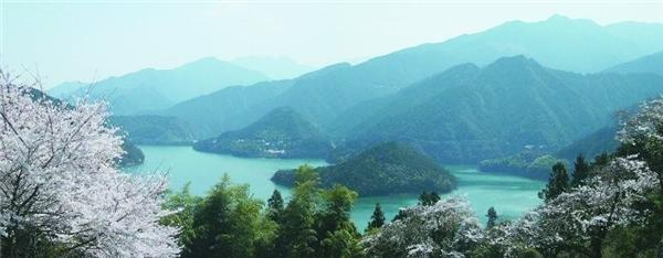 . Shikoku, Nhật Bản:Shikoku là một trong 4 đảo lớn của Nhật Bản và chưa được khám phá nhiều. Du khách sẽ có cơ hội thưởng thức mì udon ngon nhất nước Nhật, chiêm ngưỡng các tòa lâu đài cổ, đi bộ trên đường mòn qua núi, hay chèo thuyền kayak trên sông. Nếu có thời gian, bạn nên đi tuyến đường hành hương nổi tiếng qua 88 ngôi đền. Ảnh:Janenecarey.