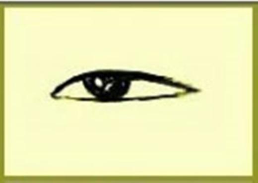 Người có đôi mắt vừa nhỏ vừa dài khá là kiêu ngạo, việc gì cũng quyết định nhanh chóng, trời sinh đã có sự quyết đoán, xử lí việc gì cũng bình tĩnh,suy nghĩ cẩn thận, kĩ càng mới bắt đầu làm.(Ảnh Internet)