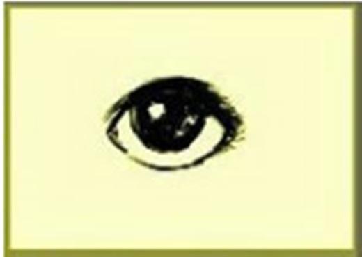 Người có đôi mắt tròn tính cách rấtthẳng thắn, lạc quan và cũng cựcngây thơ, giỏi thể hiện bản thân, kĩ năng giao tiếp tốt. Họthích nhữngviệc lãng mạn, nhưng lại có ham muốn chiếm hữu mạnhmẽ và mang một chút tâm lí thích lợi dụng, đầu cơ.(Ảnh Internet)