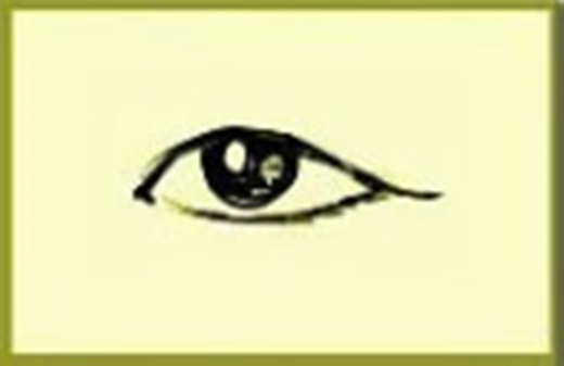 Người có khóe mắt rủ xuống, đa số đều có khả năng quan sát rất tốt, tính cách cẩn thận, luôn suy nghĩ chu đáo mọi việc, hành động nhã nhặn, chừng mực, thái độ ổn định, tương laisẽ là một trợ tá rất giỏi.(Ảnh Internet)