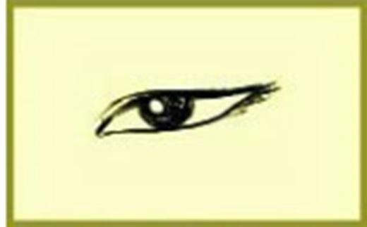 Người có khóe mắt nhỏ mà đuôi mắt hơi xếch lên (nhân tướng học thường gọi là mắt phượng), họ thường rất giàu tình cảm, rất có duyên và có sức hút với người khác giới, tính cách khá nhạy cảm, hiếu kì, khả năng lĩnh hội cao, trời sinh có con mắt thẩm mĩ, năng lực học tập cũng rất tốt.(Ảnh Internet)