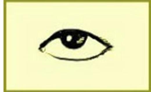 Nhân tướng học cho làở trạng thái bình thường, tròng đen phải nhiều hơn tròng trắng, như vậy tinh thần và cơ thểmới có thể yên ổn.Nếu tròng trắng lộ ra quá nhiều, tròng đen quá ít, vậy thì cuộc đời sẽ gặp phải nhiều điều không tốt, dễ cótranh chấp, nếu là con gái thì đường nhân duyên gặp nhiều trở ngại.(Ảnh Internet)