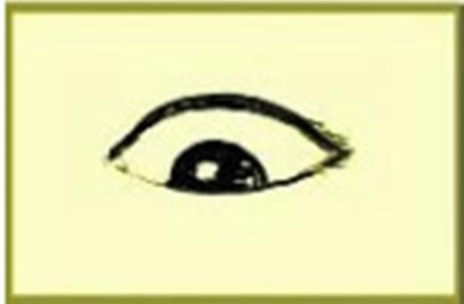 Người cómắt thượng tam bạch (tròng đen nằm sát phíadưới, phía trên và hai bên mắt đều là tròng trắng) và hạ tam bạch (tròng đen nằm sát phía trên, phía dưới và hai bên mắt đều là tròng trắng) là người có tính cách rõ ràng, quật cường, cứng đầu và lạnh lùng, tâm tư sâu lắng, xử lí việc thiên về sở thích cá nhân. Họthường bất đồng quan điểm với người khác, cũng không quan tâm cảm nhận của người ta, thường có tác phong xử lí công việc liền mạch, đâu ra đấy và cũng là một người khá thích tranh luận.(Ảnh Internet)