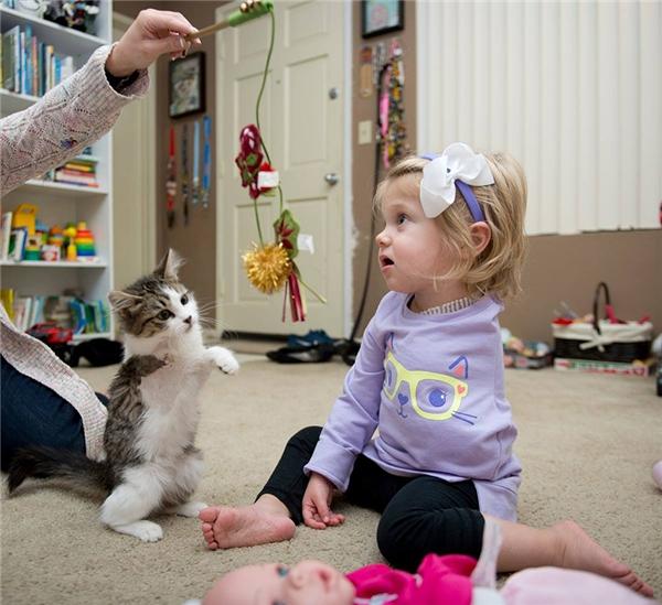 Cảm động trước tình bạn của bé cụt tay với chú mèo cụt chân