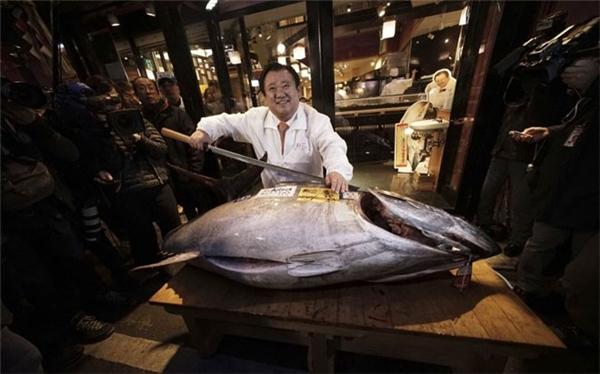 Đấu giá cá ngừ. (Ảnh: Internet)