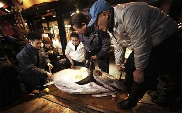 Người mua hàng đang xem cá. (Ảnh: Internet)