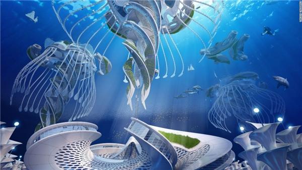Cấu trúc lạ, giống một con sứa sẽ giúp Aequorea trụ vững trước tác động ngoại cảnh.(Ảnh: CNN)