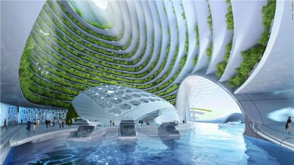 Cuộc sống dưới đáy biển vẫn không hề thiếu màu xanh cây cỏ.(Ảnh: CNN)