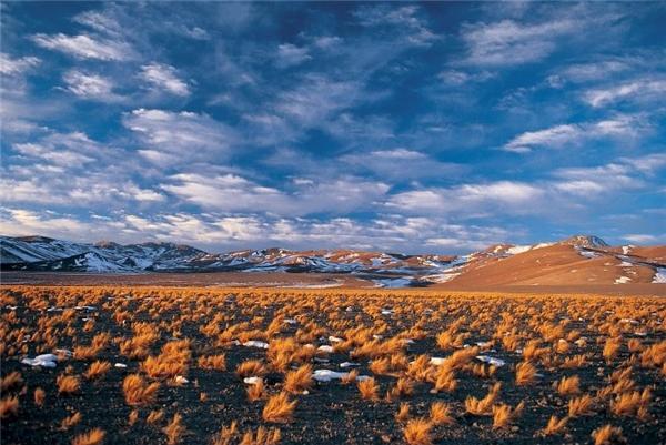 Vùng San Pedro de Atacama có thể chinh phục du khách ngay những phút ban đầu bởi khung cảnh hoang dã và quyến rũ mê hồn với bầu trời xanh mênh mông trên những ngọn núi hùng vĩ, mạch nước nóng bốc khói nghi ngút, cánh đồng muối trải dài, cácbụi cỏ dại… Nhưng rồi họ cũng sẽ chẳng chịu đựng được lâu bởi khí hậu khắc nghiệt, khô hạn và nắng nóng quanh năm của nơi này.(Ảnh: Internet)