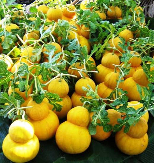 Những loại quả độc, siêu xa xỉ dùnglàm quà ngày Tết