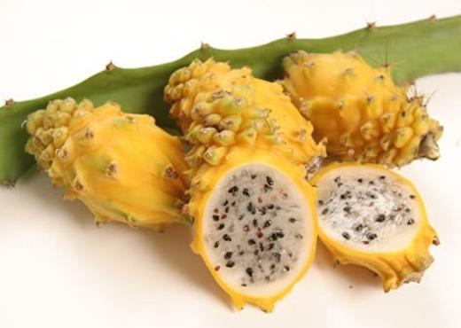 Thanh long vàng là loại quả được ưa chuộng ở Việt Nam và các nước khác. (Ảnh: Internet)